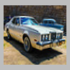 Forest River Sportster car history search - Secure The Buy Instantly!